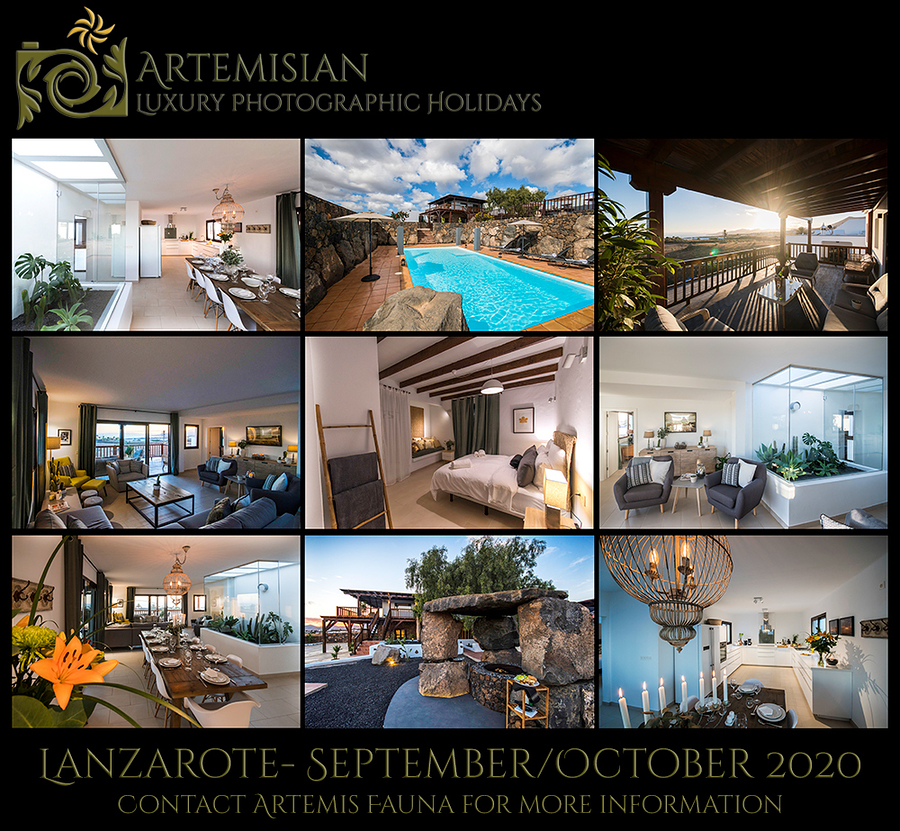 Artemisian Events heads to Lanzarote in 2020... /  / Uploaded 14th May 2019 @ 12:31 PM
