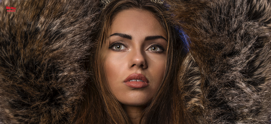 Lost in Fur / Photography by Big Fella Photography / Uploaded 1st December 2014 @ 10:03 PM