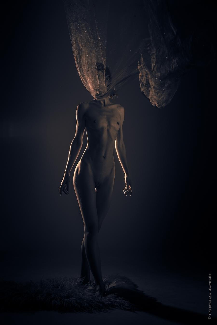 my figure