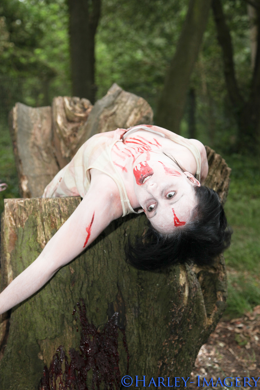 zombie death / Photography by Harley / Uploaded 14th July 2012 @ 07:01 PM