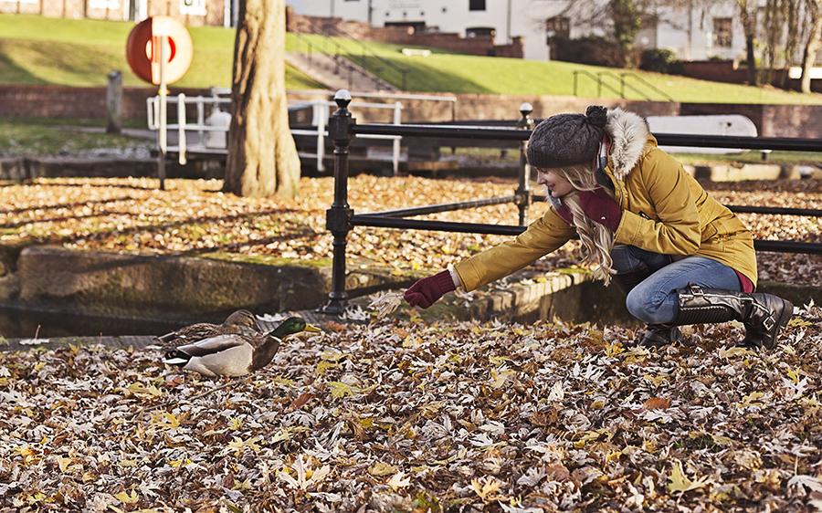 Feeding the Ducks With a Leaf !! / Photography by GaryMac Photography, Model Artemis Fauna / Uploaded 28th December 2016 @ 12:15 AM