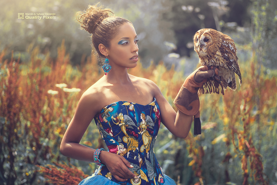An afternoon with the owl / Photography by Quality Pixels, Makeup by Jules Robson, Post processing by Quality Pixels, Hair styling by Jules Robson / Uploaded 9th August 2016 @ 06:10 PM
