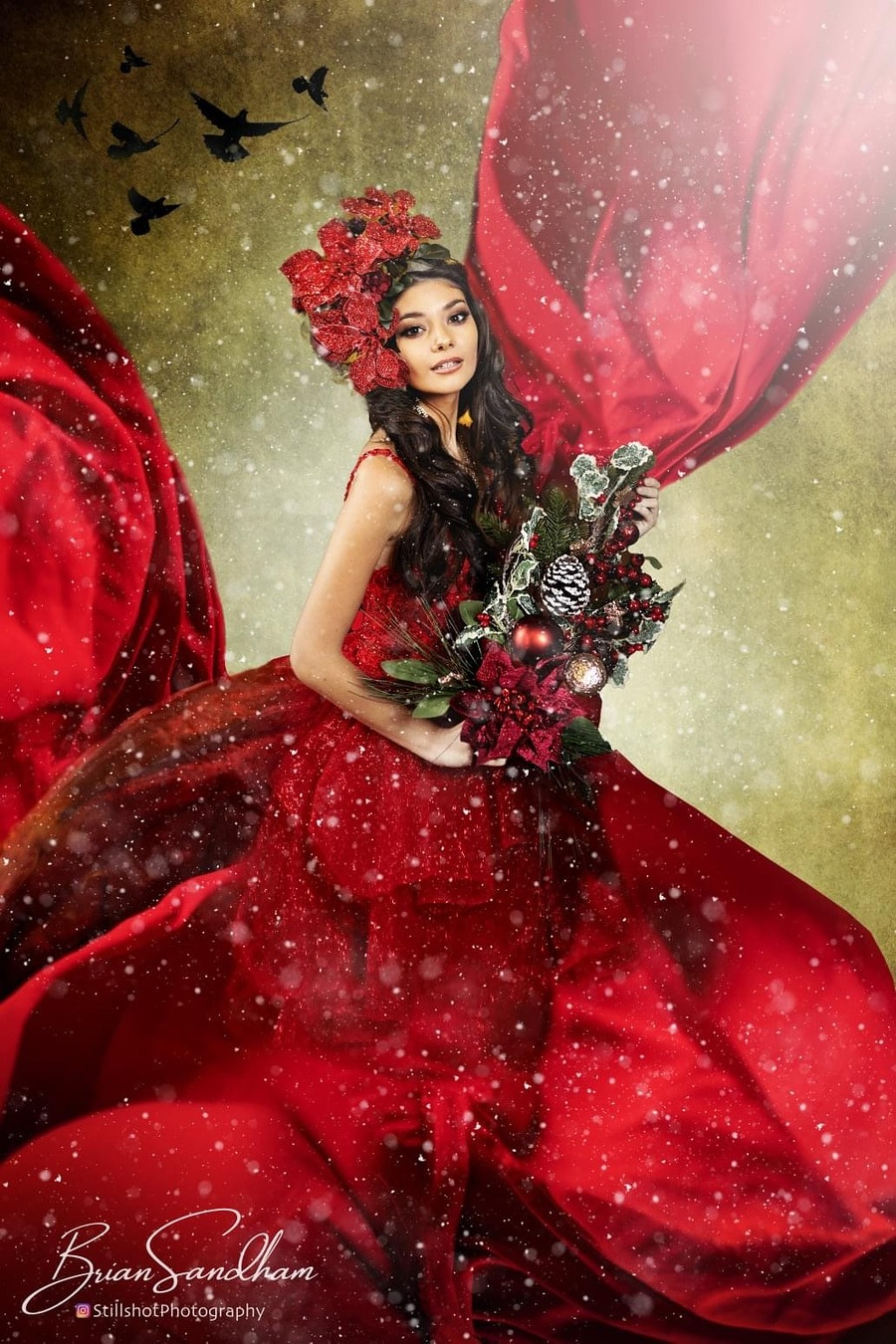 Red in winter / Photography by Vines Art House, Model Elle B1329, Post processing by Vines Art House, Taken at Vines Art House / Uploaded 11th January 2021 @ 06:37 AM