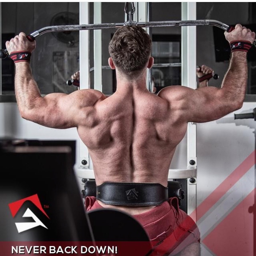 Never back down / Model Jamie4 / Uploaded 30th May 2019 @ 04:52 PM
