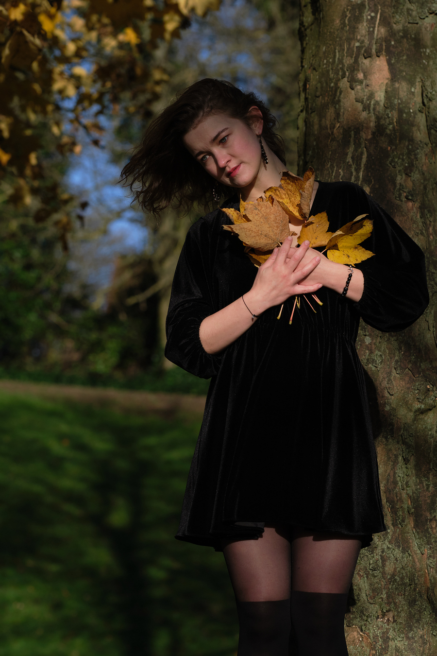Leaves / Photography by Laurence Taylor / Uploaded 27th December 2020 @ 03:21 PM