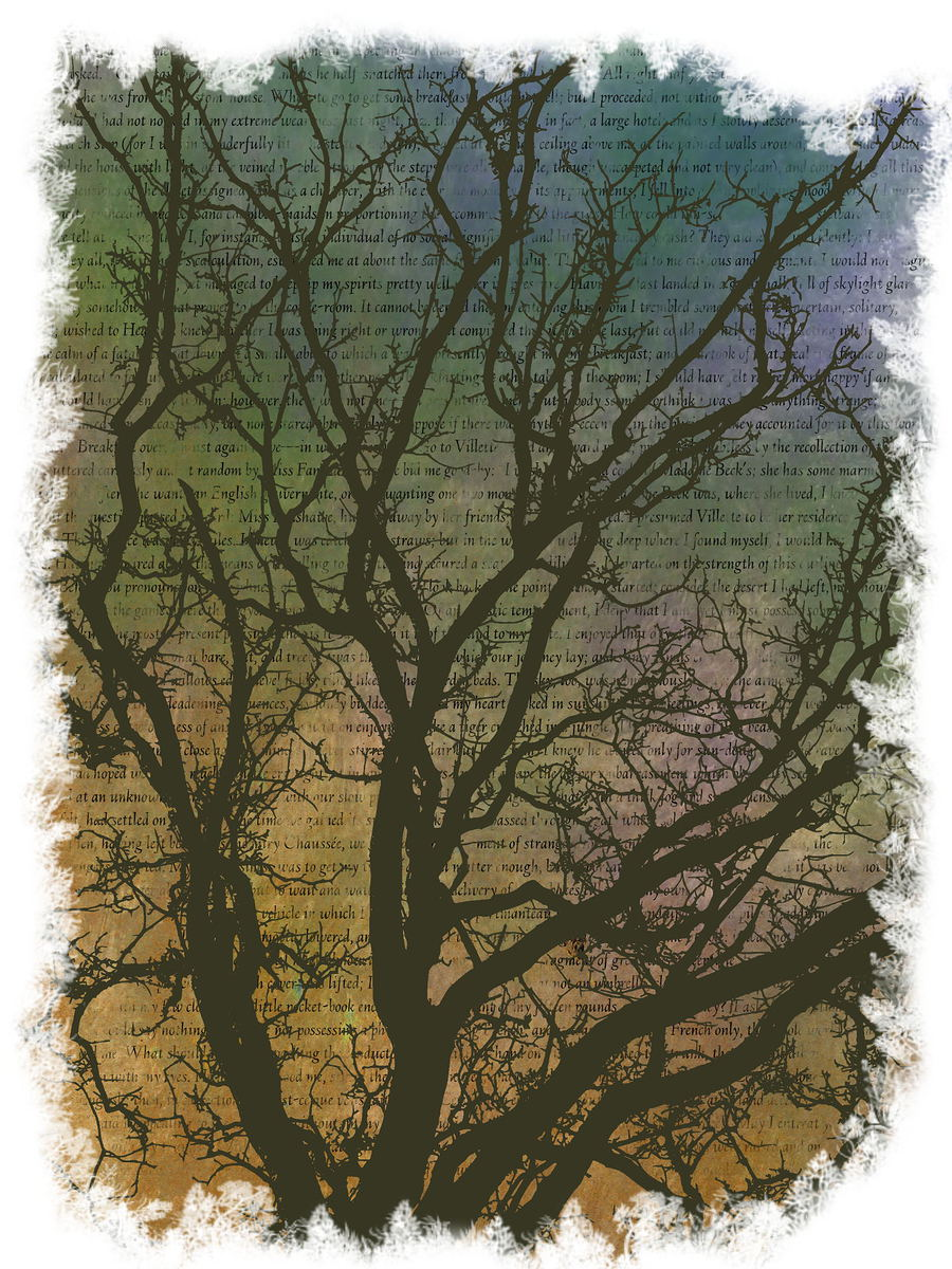 'Villette' oak tree / Artwork by Somhairle Kelly, Designer Somhairle Kelly / Uploaded 31st December 2014 @ 12:40 AM