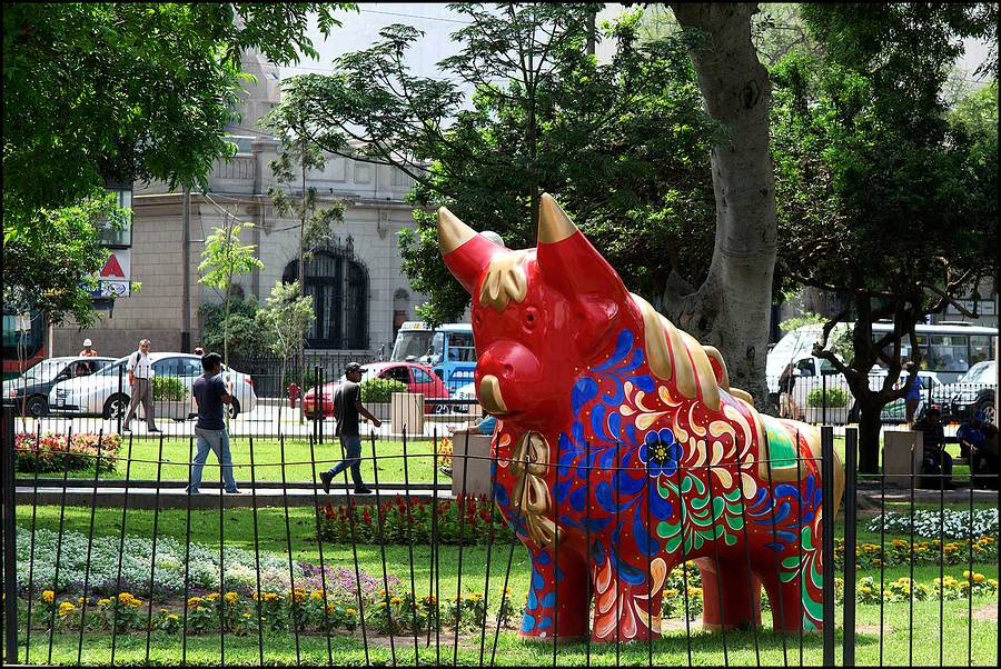 Bull in Kennedy Square. Lima, Peru. / Photography by Jerome Razoir / Uploaded 6th June 2015 @ 04:12 PM