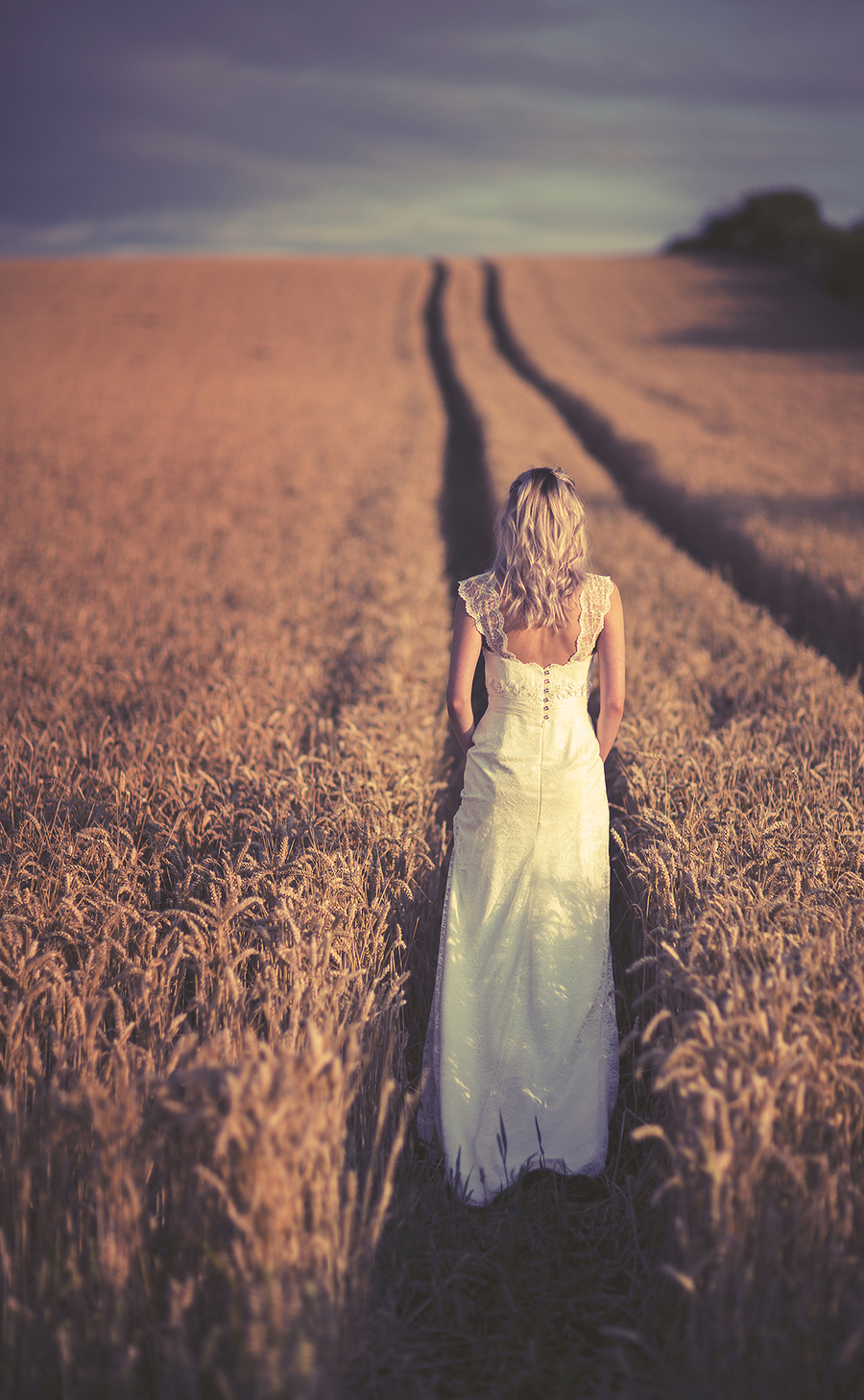 Miranda in the corn / Photography by jakabi / Uploaded 21st August 2015 @ 01:05 PM
