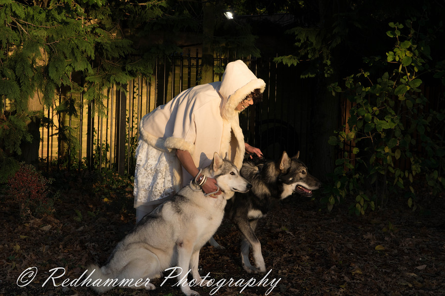 Wolf Lady / Photography by Redhammer / Uploaded 13th November 2017 @ 11:35 PM