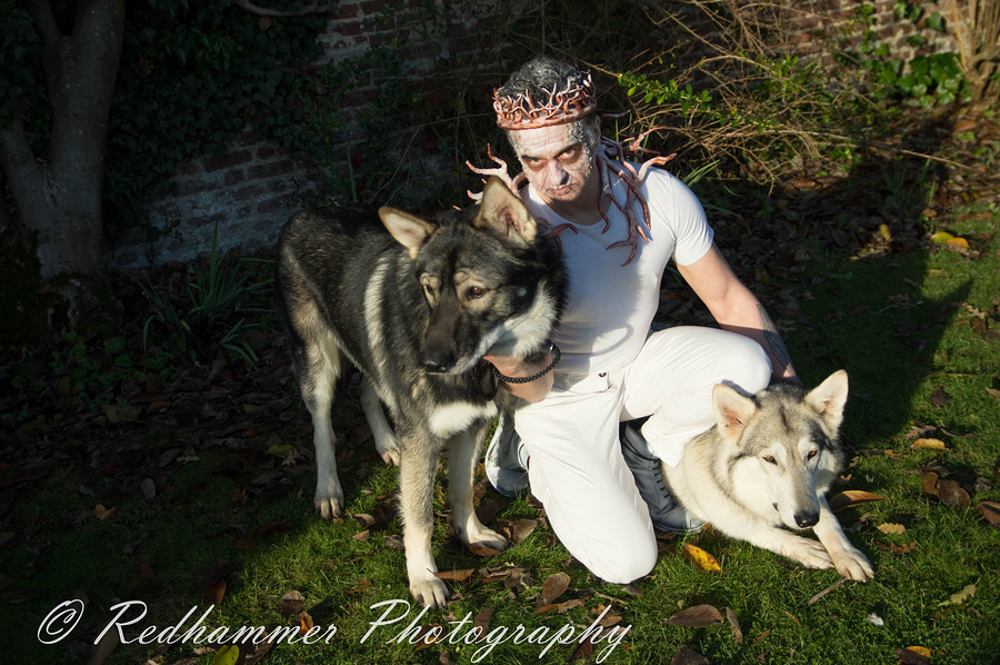 Working with Wolves / Photography by Redhammer / Uploaded 13th November 2017 @ 11:43 PM