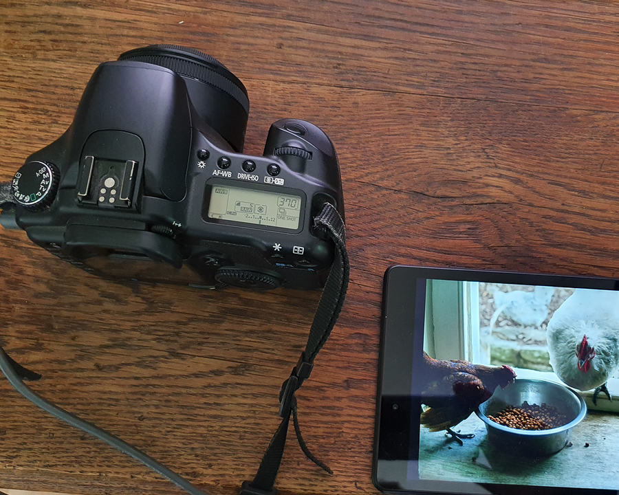 Easy cheap tethering. / Photography by Huw / Uploaded 13th May 2020 @ 04:38 PM