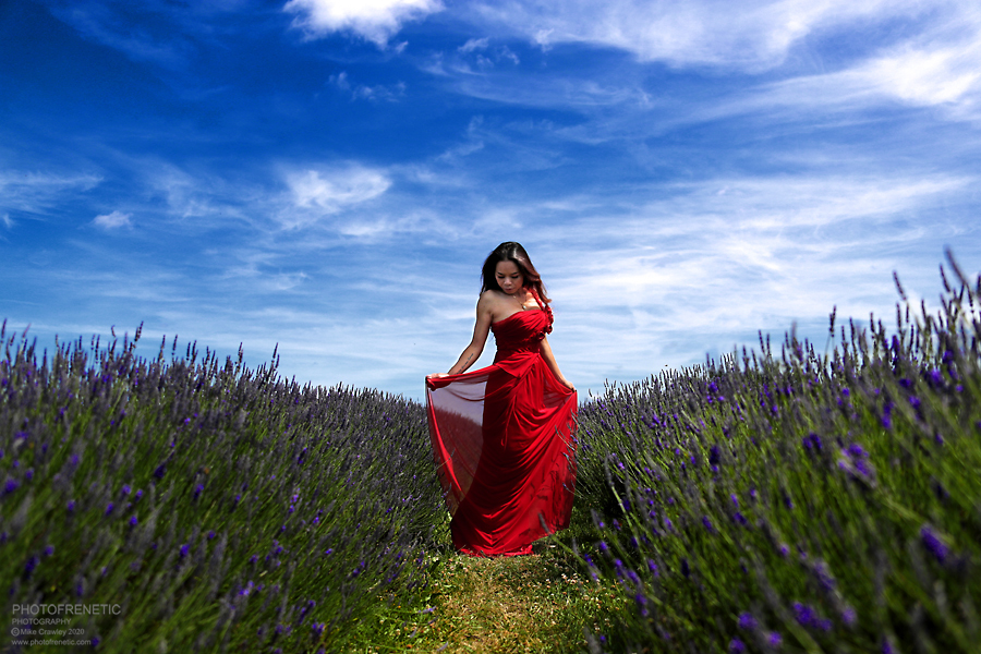 Lavender Fields / Photography by Photofrenetic, Model ชีวิตของนักศิลป์ (LifeofArt), Post processing by Photofrenetic, Stylist ชีวิตของนักศิลป์ (LifeofArt) / Uploaded 2nd August 2020 @ 06:44 PM