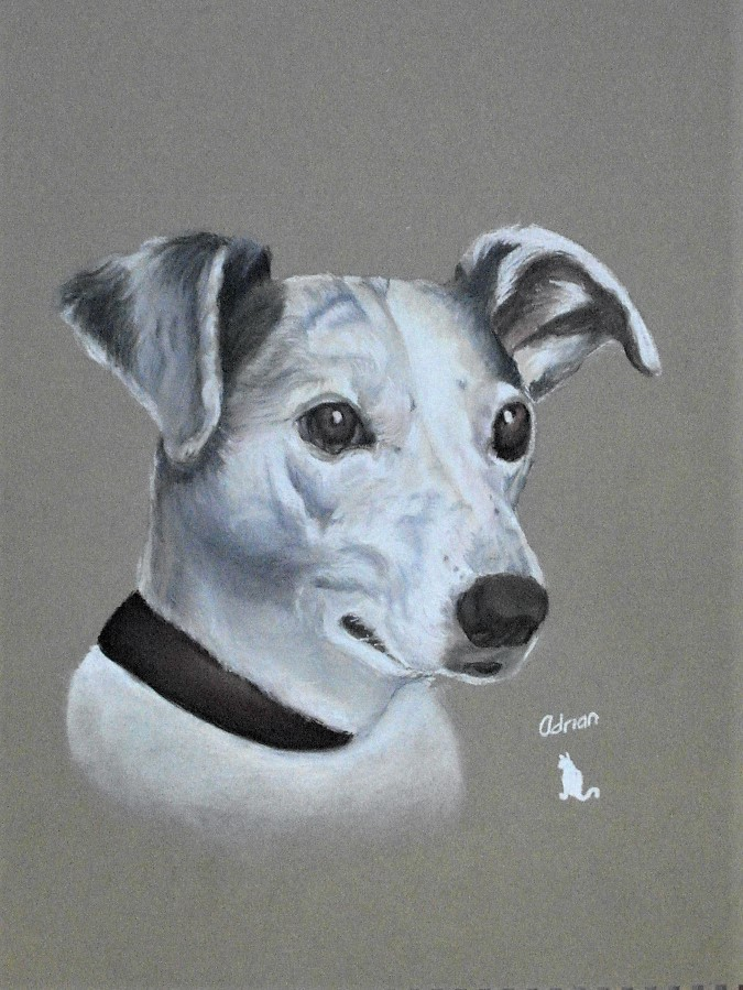 Top Dog / Artwork by Adrian Henderson / Uploaded 2nd February 2019 @ 08:21 AM
