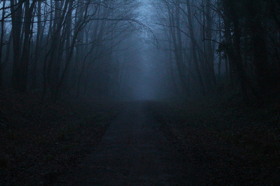 Foggy path at night / Photography by Lexi Brush / Uploaded 12th March 2015 @ 10:57 AM