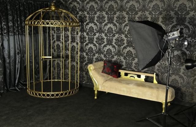 giant birdcage / Photography by Curiosity Photography Studio & Prop Hire, Taken at Curiosity Photography Studio & Prop Hire / Uploaded 8th December 2015 @ 09:39 PM