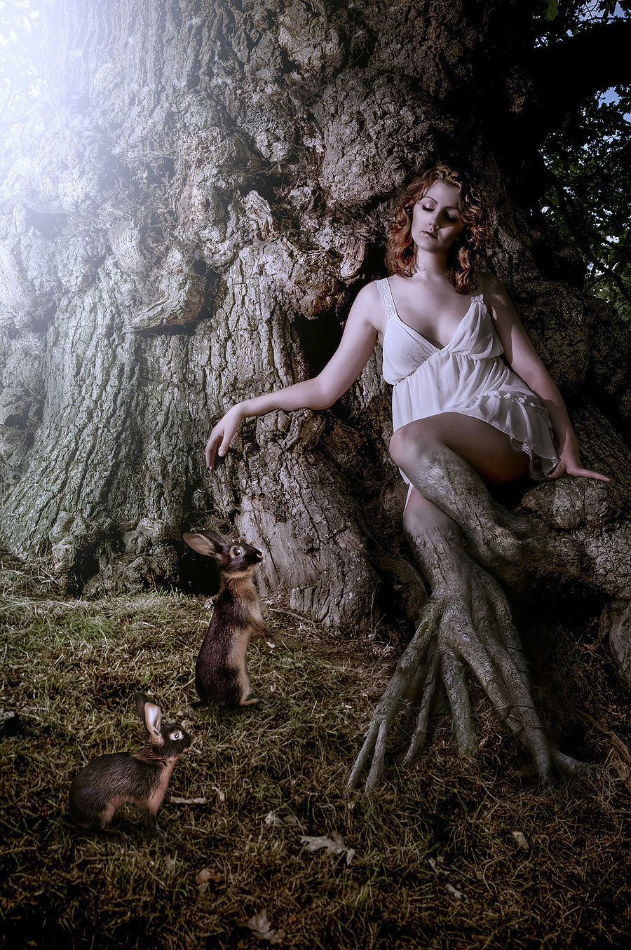 Roots / Photography by Andrew Dobell, Post processing by Creative Edge Retouch / Uploaded 1st December 2014 @ 02:09 PM