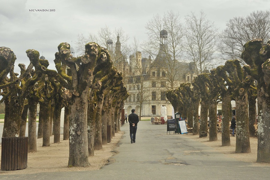 Chambord, a long walk /  / Uploaded 20th February 2016 @ 04:17 PM