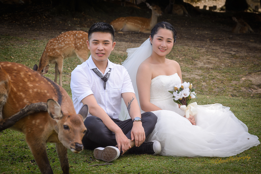 Happy couple / Photography by CAscotPhotography, Post processing by CAscotPhotography / Uploaded 15th September 2017 @ 12:06 PM