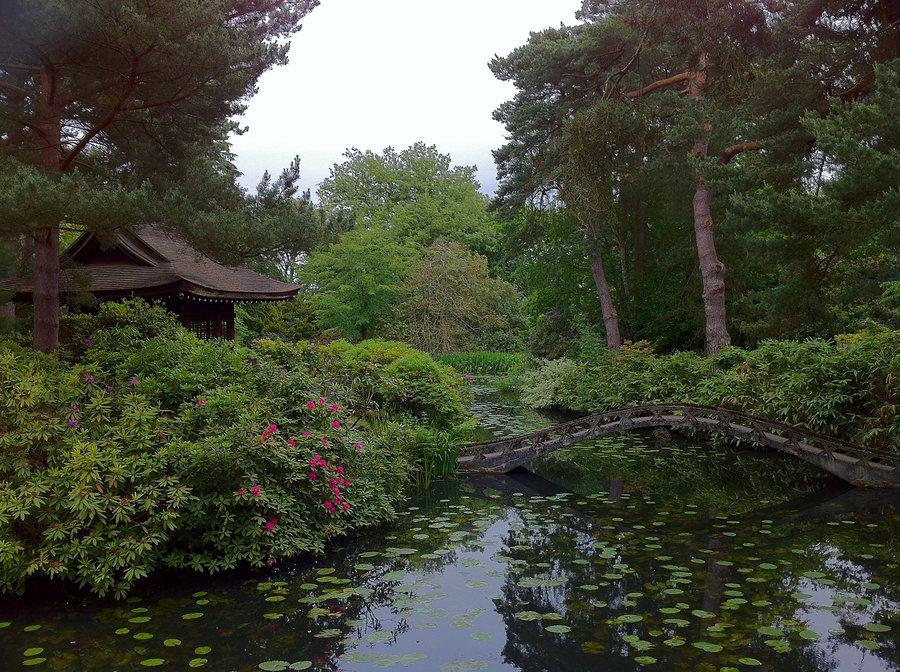 Taton Park,United Kingdom / Photography by Blueseastudios / Uploaded 24th April 2016 @ 11:34 AM