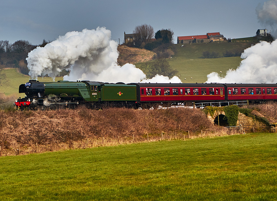 Flying Scotsman / Photography by Bill / Uploaded 13th March 2016 @ 01:29 PM