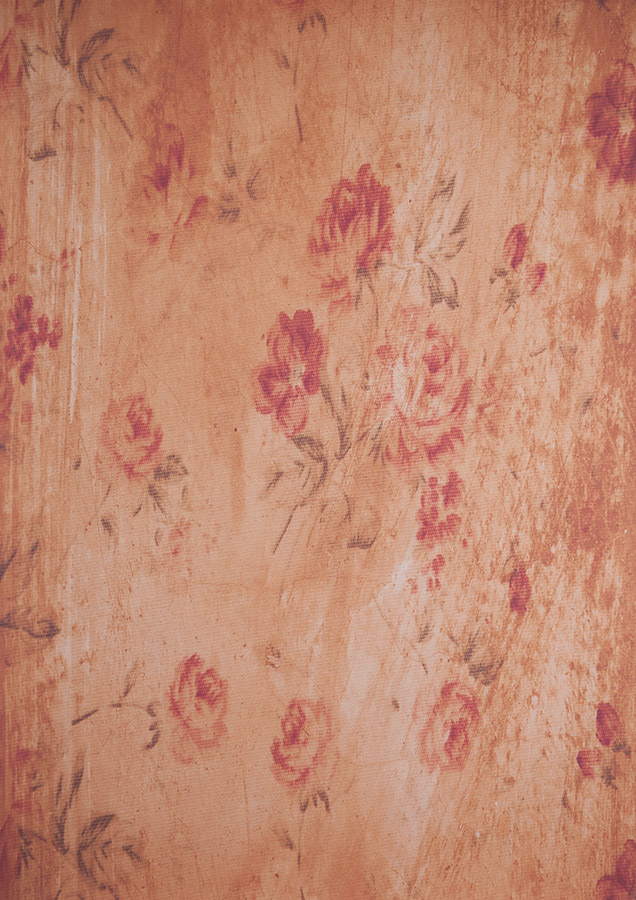 Vintage Wallpaper (Flower) / Taken at Spitfire Studio Swindon / Uploaded 18th November 2015 @ 02:50 PM
