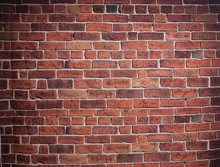 Brick Wall backdrop / Taken at Fine and DanDee Studio / Uploaded 26th April 2016 @ 10:43 AM